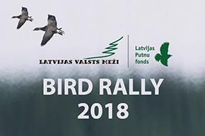 Birds Rally 2018